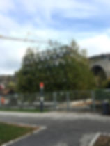 stedelijk forum