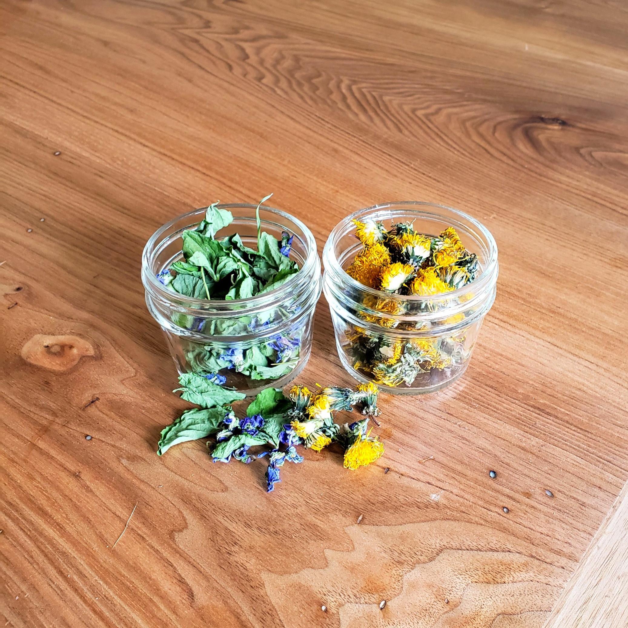 Workshop #1 Herbal Infused Oils