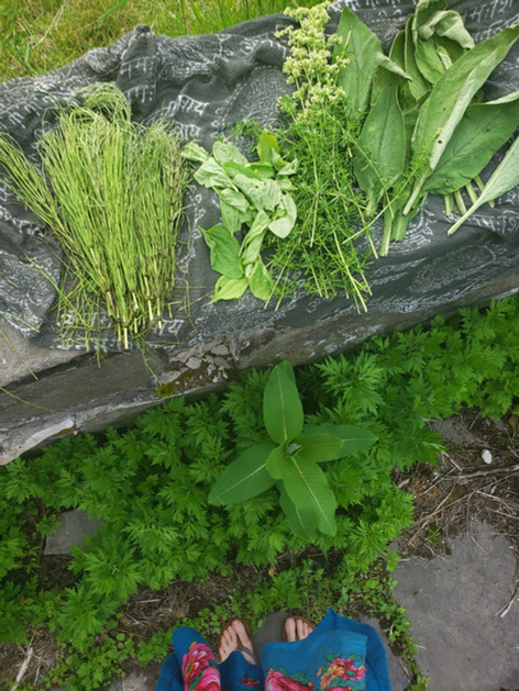 Full moon herb gathering
