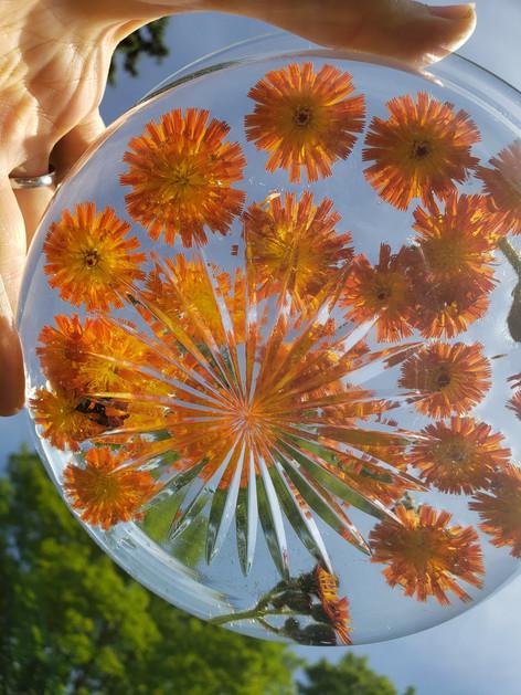 Flower essence prep