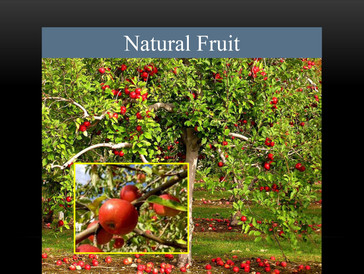 Natural Fruit