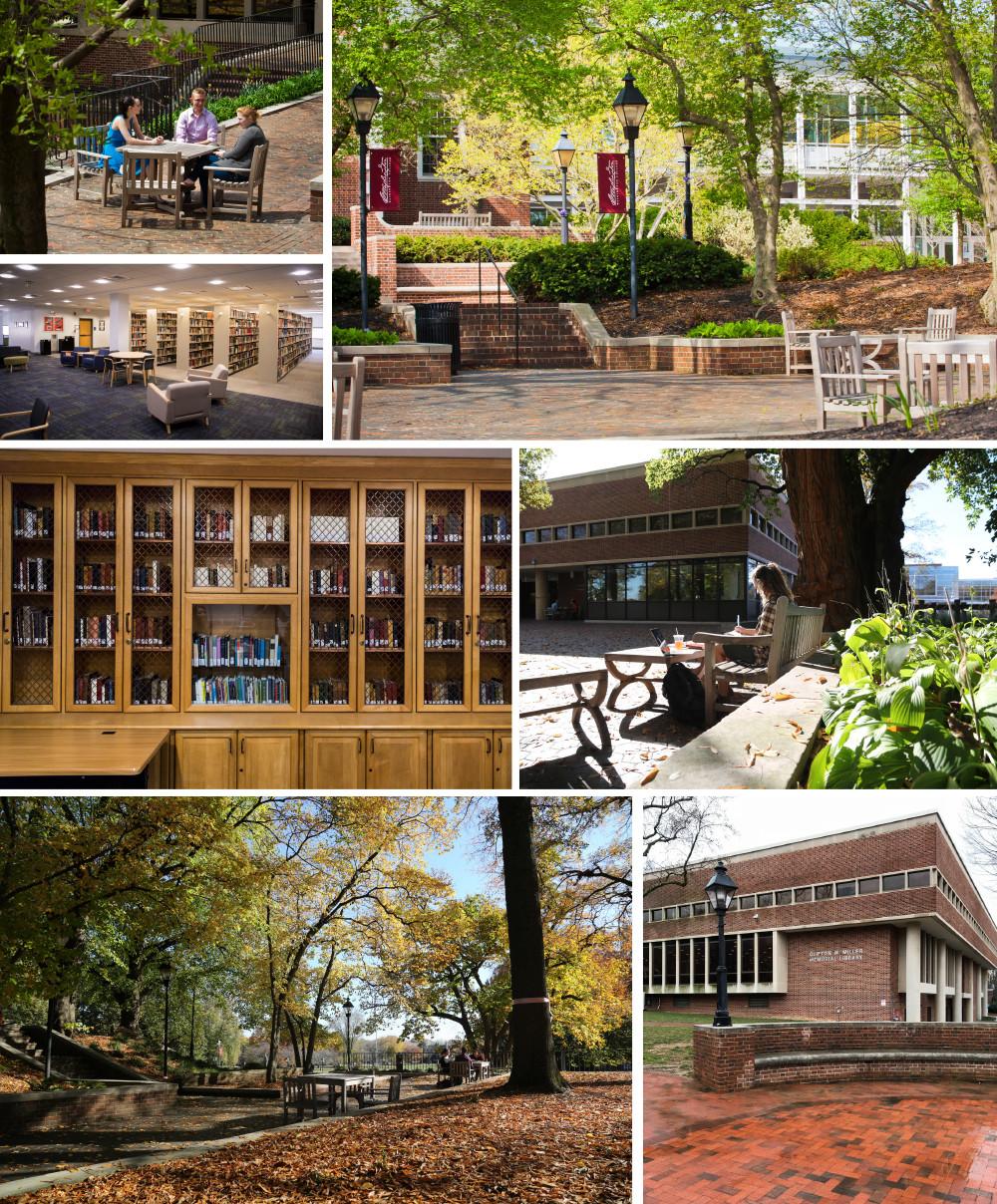Kent County: Washington College