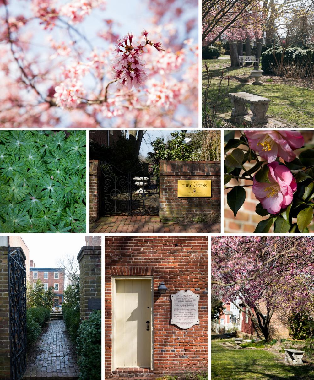 Talbot County: Talbot County Historical Society Gardens