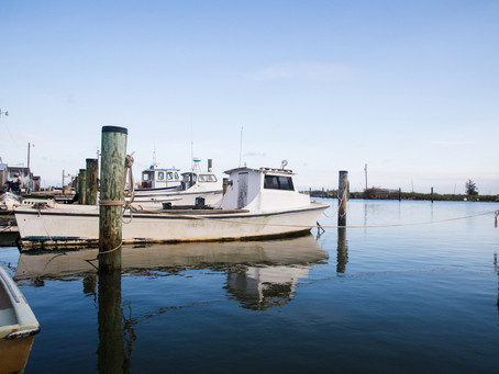 Smith Island: Set Sail for the Solitude and Simplicity of this Somerset Isle