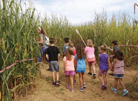 Corn Maze Days