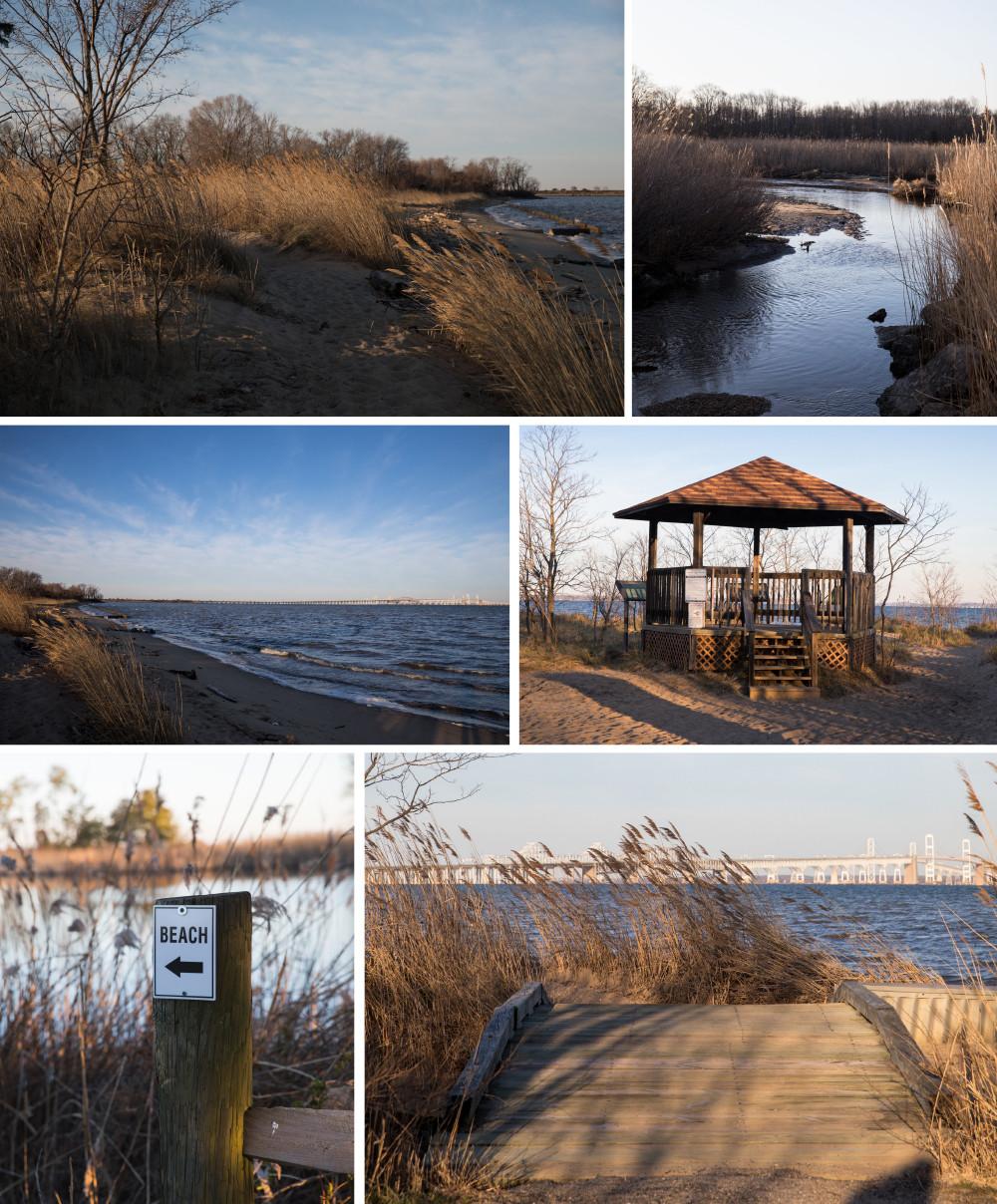 Queen Anne's County: Terrapin Beach Park