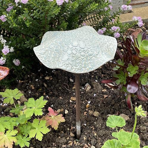 Garden Mushroom (Sea Spray)