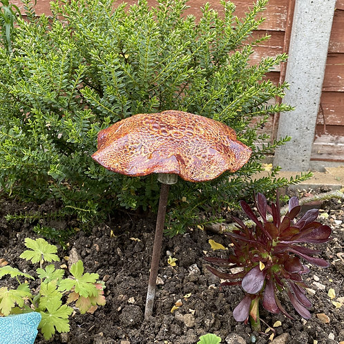 Garden Mushroom (Brown)