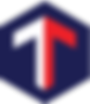 logo tech cargo.png