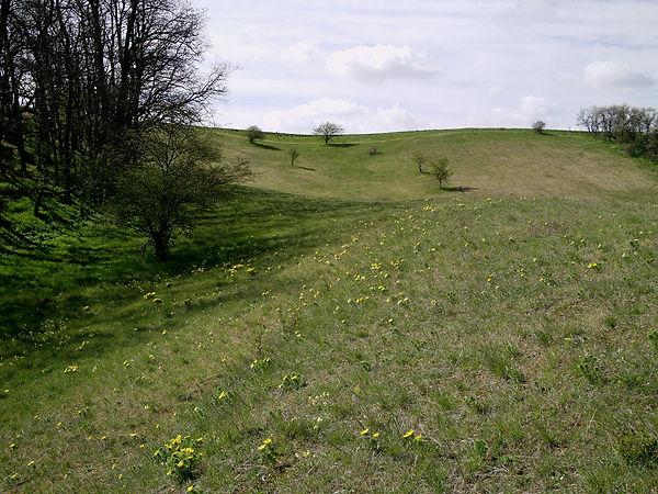 Streckenbach_IMAG0652.JPG