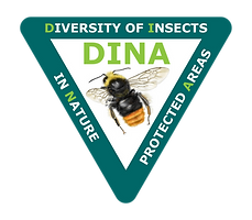 DINA logo v1c JdR 2019 - 16x14 cm sRGB +