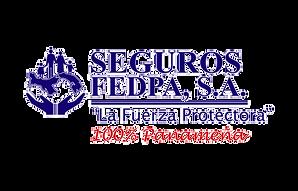 optima-seguros-bg.png