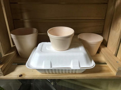 Envases de foam biodegradable