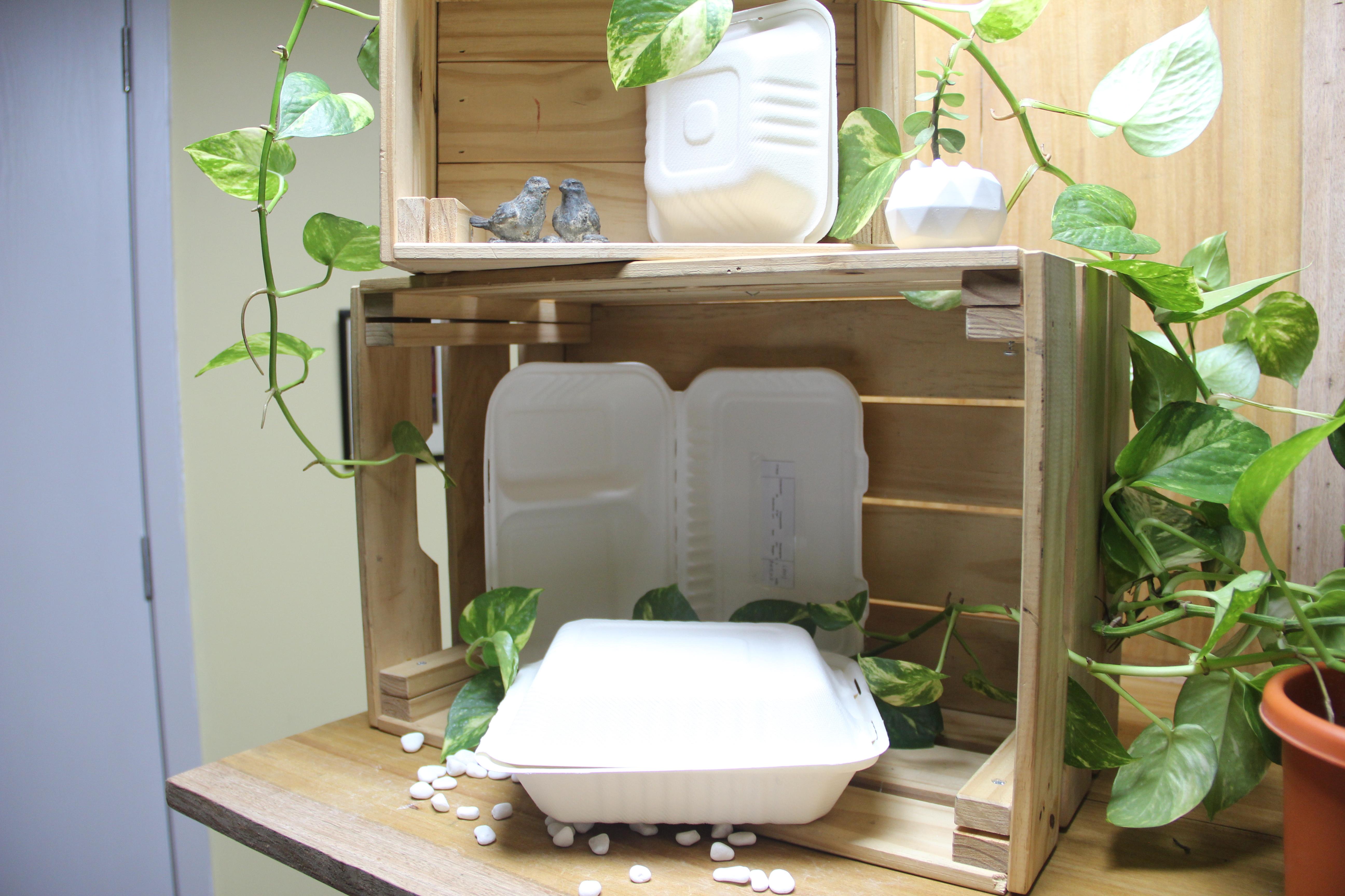 Fiambrera compostable