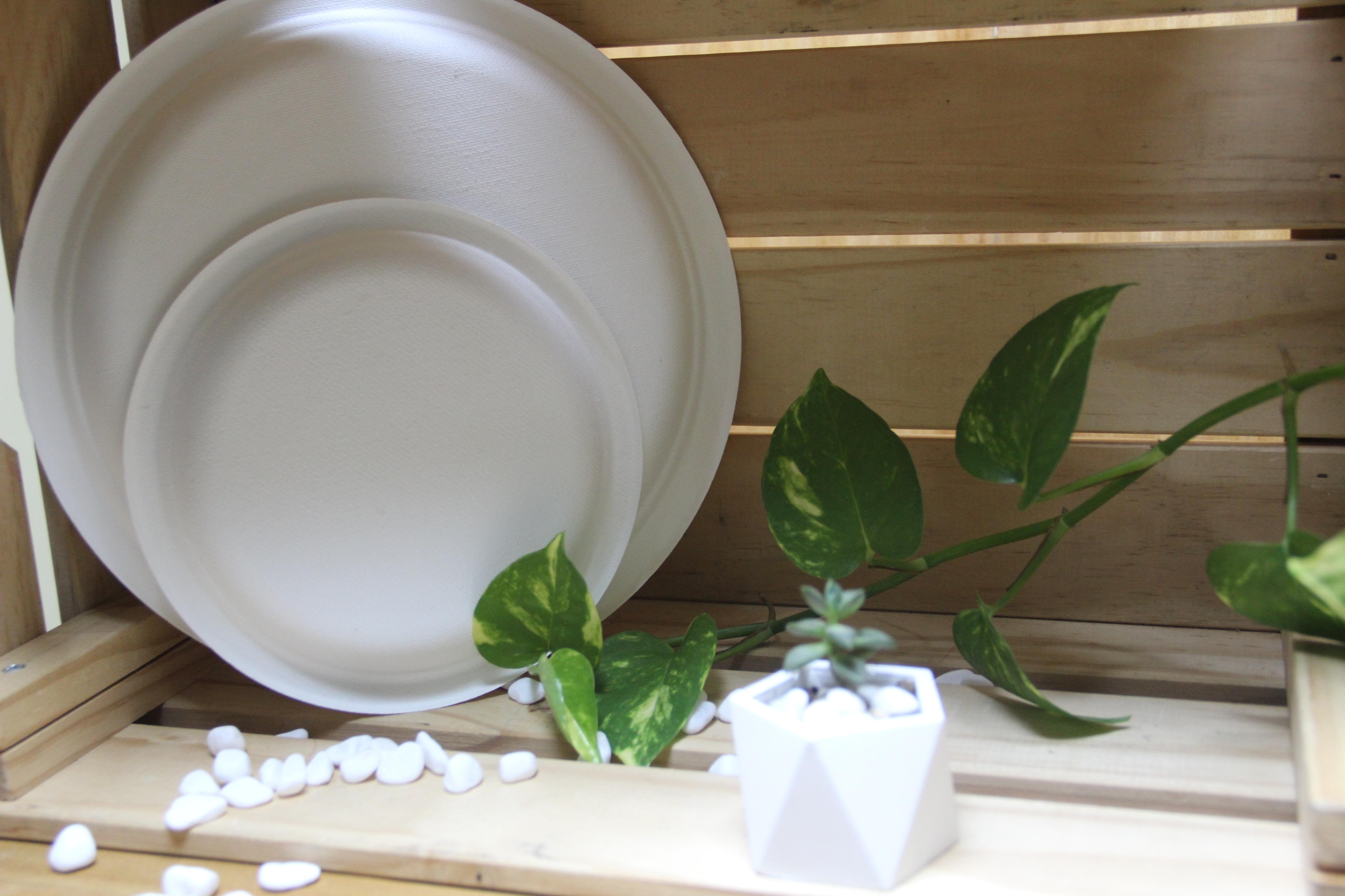 Plato redondo compostable