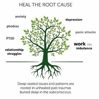 Heal the root cause - trauma.jpg