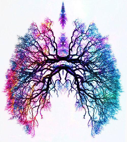 BioDynamic Breathwork & Trauma Release