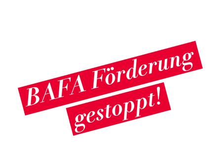 BAFA Förderung für Beratung plötzlich gestoppt – The WINNER macht trotzdem weiter