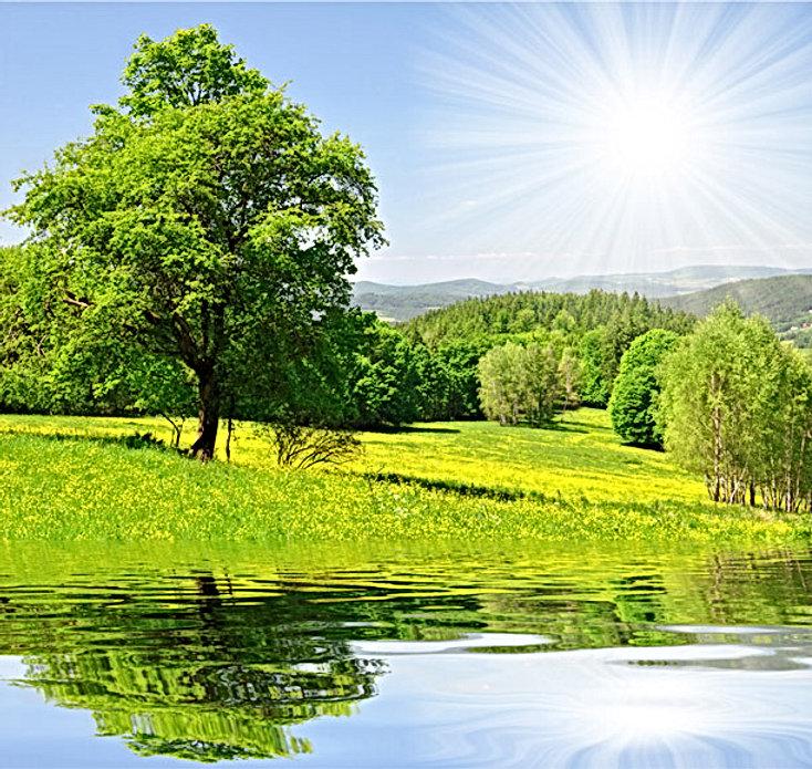 environmentally friendly coatings.jpg