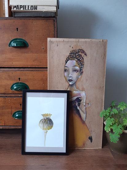 Poppyseed bulb