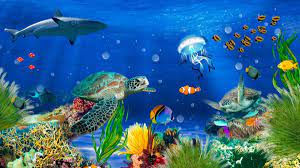 O Fundo do Mar