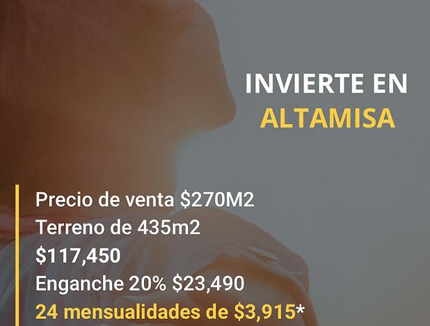 Invierte en Altamisa.png