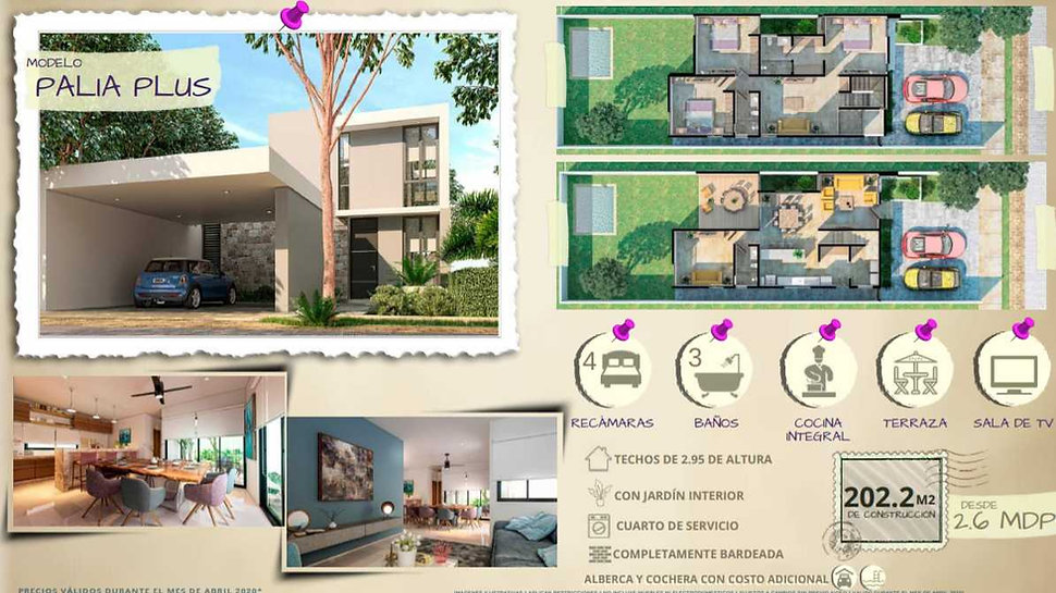 Modelo Palia Plus.jpg