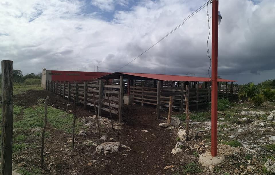 Rancho Dzoncauich, zona ganadera