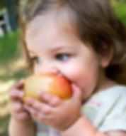 Thearpy for picking eating in child with ASD
