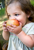 Little girl eating juicy apple at snack time in Signing Hands class.
