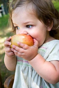 3 year old child biting apple