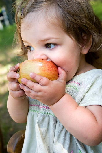 A small white child eating an apple.