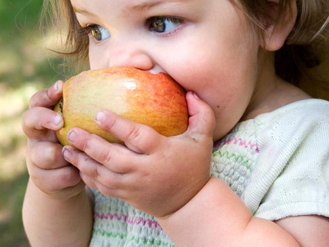 Top Tips for Raising Healthy Eaters by Amara Wagner, Integrative Health Coach