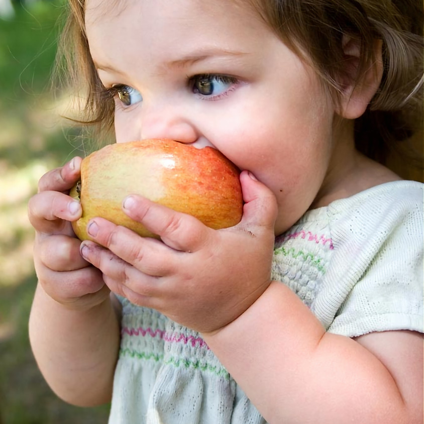 Nutrition for 1-4 Year Olds