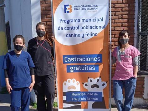 Castraciones gratuitas en barrios