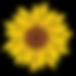 Sunflower-clip-art-free-printable-clipar