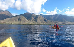 Makena-Kayak-Tour-12.jpeg