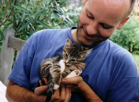 Tiersitting im Urlaub: Der Tierbetreuungsvertrag