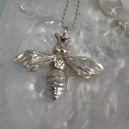 Silver buzzy bee