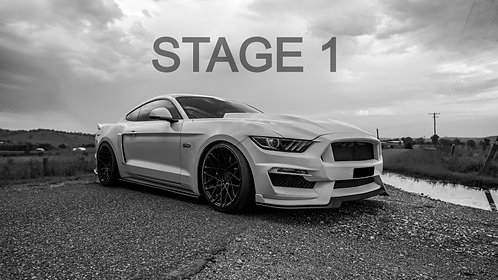 STAGE 1 MUSTANG