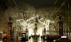 Columbia University in December