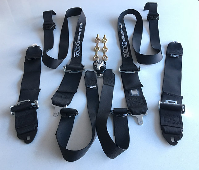 Renault Sport 6 Point Harness