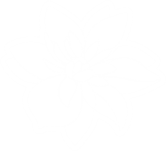 цветок белый контур.png