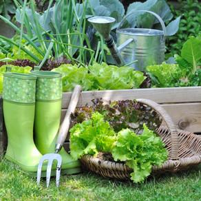 Маленькие хитрости садовода-огородника