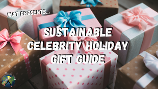 Your Last-Minute Holiday Gift Guide of Sustainable Celebrity Products and Brands