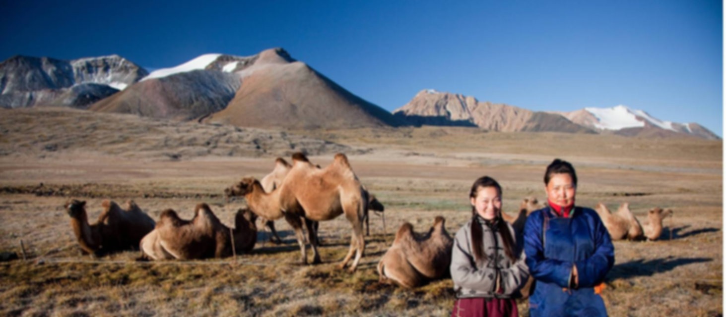 Bactrian-Camels-And-Local-People-318151-