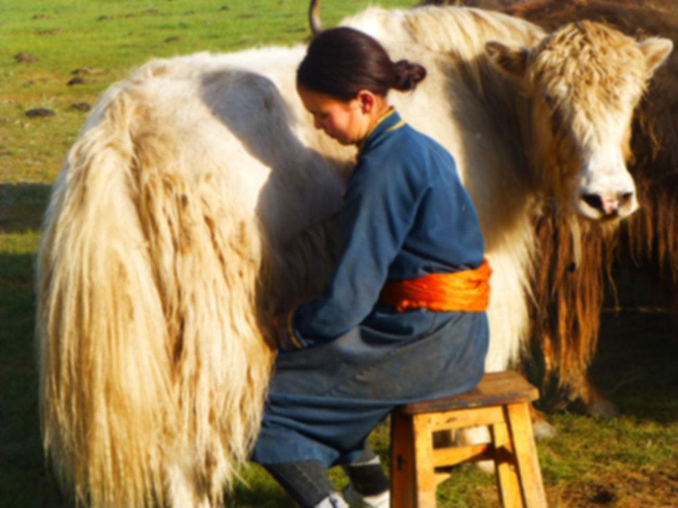 Local_people_Mongolia-[19091].jpg