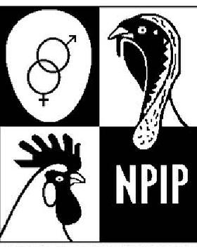 NPIP.png
