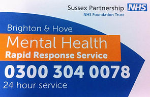 Brighton and Hove Mental Health Rapid Response Service