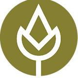Logo_Regiosaatgut_pos_cmyk_edited.png